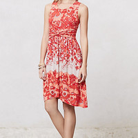 Coral Gardens Dress