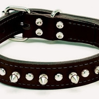 Coastal Pet Circle T Spiked Leather Dog Collar 1 in X 20 inch Black