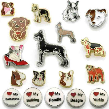 10pcs all Newly dog charms are here for your fashion necklace jewelry glass locket