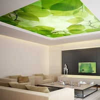 "Ceiling STICKER MURAL leaves trees spring forest airly air decole poster 93x93""(236x236cm)"
