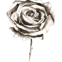 Original Watercolor Painting - Black White Grey Rose