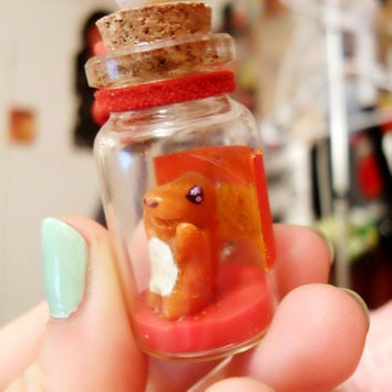 Pokemon Bottle Charm: Charmander
