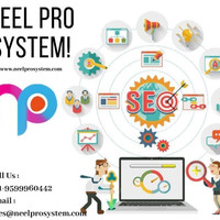 Neelpro System gives Best and complete seo services