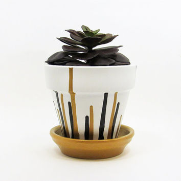 Terracotta Pot, Succulent Planter, Cute Planter, Gold Black Planter, Modern Planter, Indoor Planter, Succulent Pot, Flower Pot, Small Pot