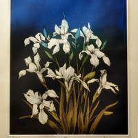 Vintage Color Etching - Irises at Twilight - Signed Artist's Proof Artwork - Botanical Floral Print