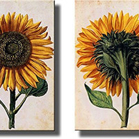 Sunflowers Picture on Stretched Canvas, Set of 2 , Wall Art Decor Ready to Hang!.
