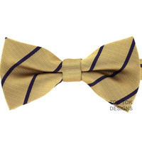 Tok Tok Designs Pre-Tied Bow Tie for Men & Teenagers (B44)