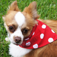Red Polka Dot Dog Bandanna