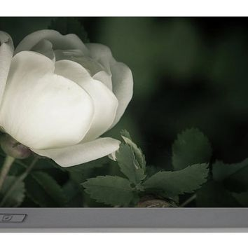White Flower Of A Dogrose Portable Battery Charger