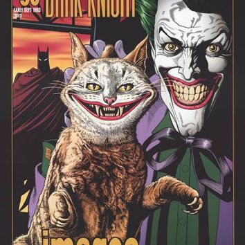 Batman The Joker with Evil Cat DC Comics Poster 24x36