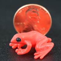 Miniature Red Poison Dart Frog