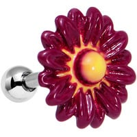"16 Gauge 1/4"" Dark Pink Gebera Daisy Flower Tragus Cartilage Earring"