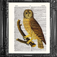 Owl Illustration-Upcycled Dictionary Art Print Antique Book Page Art-Dorm College Home Wall Decor, Dorm Room Decor Owl Gift Poster Code:BO3