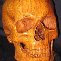Wood Human Skull sculpture hand carved in Cocobolo | WaterwalkerWoodworks - Sculpture on ArtFire