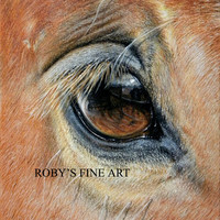 Horse Print Mustang Horse Eye Art Giclee by Roby Baer PSA