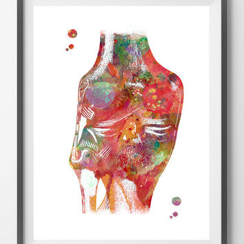 Knee anatomy watercolor print knee joints medical art knee ligaments and tendons poster orthopedic surgery the human knee anatomy art print