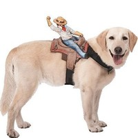 Ride On Cowboy Dog Costume - Party City