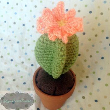 Crocheted Star Cactus