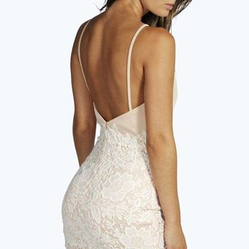 Ariel Boutique Lace Crochet Bodycon Dress