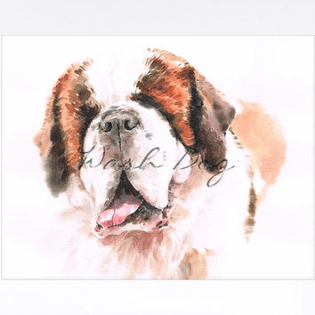 Saint bernard print of original watercolor painting, Saint bernard art, Saint bernard painting, Saint bernard watercolor,Gift For dog lovers