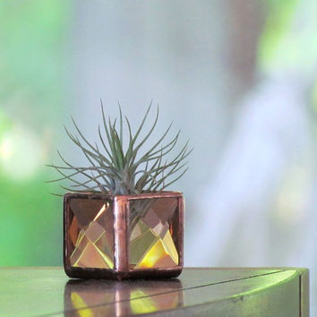 Mini Air Plant Holder Peach Copper Stained Glass Terrarium Cubed Glass Box Planter