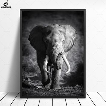 Wild Animal Elephant Portrait Poster And Print Art Wall Art Canvas Painting Living Room Decoration Black White Modern Pictures