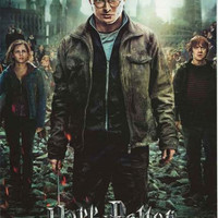 Harry Potter Deathly Hallows Part 2 Movie Poster 22x34