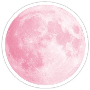 'Pink Full Moon' Sticker by Moxie Graphics