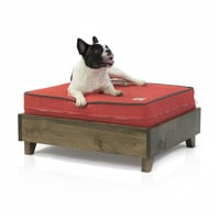 Wood Frame Dog Bed - Walnut - Made in the USA