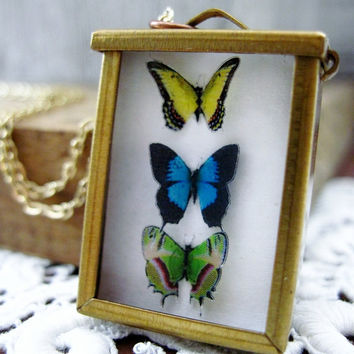 Blue Butterfly Necklace  Mini Framed Display by DoodleBirdie