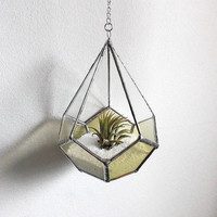 Stained Glass Air Plant Terrarium, Stained Glass Air Plant Holder, Glass Terrarium