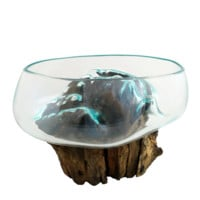 "Small Hand Blown Molten Glass and Wood Root Sculptured Succulent Bowl Terrarium (8""x8"")"