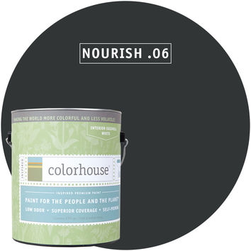 Paint by Colorhouse NOURISH .06