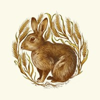 """Rabbit In Wheat"" - Art Print by Teagan White"