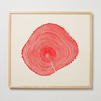 Woodcut Print, Red Fraxinus