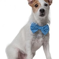 Blue Dots Bow Tie by barker & meowsky at barker & meowsky a paw firm since 1998 carries dog clothes, dog accessories, dog carriers, dog collars, dog toys, dog beds and dog treats