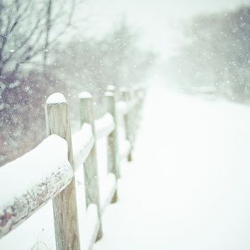 Winter Photography Snowy Path Limited Edition Giclee Print Snowstorm Trees Fence Vintage Style Photography Rhode Island Home Decor Wall Art