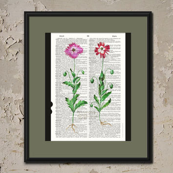 FLOWERS BOTANICAL PRINT Vintage Dictionary Page Art Upcycled Home Decor Reproduction Antique Print Office Art Nature Art Botany Illustration