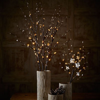 GG Collection 39 Crystal Lighted Branches