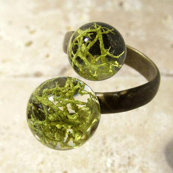 Wolf Lichen (Letharia vulpina) Adjustable ring, Moss Jewelry, Plant Jewelry, mycology, fungi, woodland, nature, Okanagan