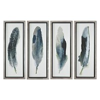 Feathered Beauty Prints, Set 4 By Uttermost