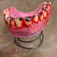 Bloody Teeth, Latex Prop, Rotting Zombie Trophy, Scary Halloween Decoration, Lower Jaw, Horror Display Piece, Blood and Gore