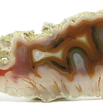 Plume Agate Burnt Orange Waves and Golden Orange Dendritic Mineral Moss in Gem Silica, Polished Semiprecious Geo Gemstone Raw Edge Gem Agate