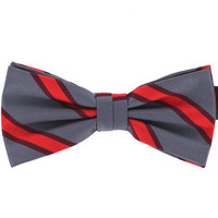 Tok Tok Designs Pre-Tied Bow Tie for Men & Teenagers (B484)