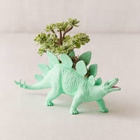 Upcycled Stegosaurus Faux Succulent Planter | Urban Outfitters