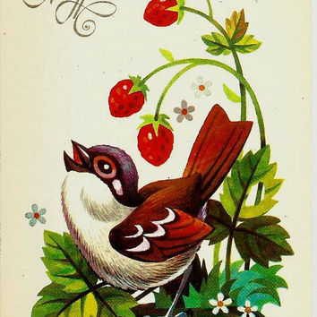 Sparrow, Bird, Vintage Russian Postcard unused 1987