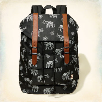 Hollister Buckle Backpack