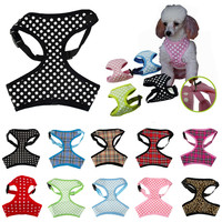 Polka Dot Mesh Dog Harness