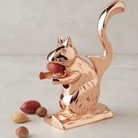 Squirrel Nut Cracker by Anthropologie in Copper Size: One Size House & Home
