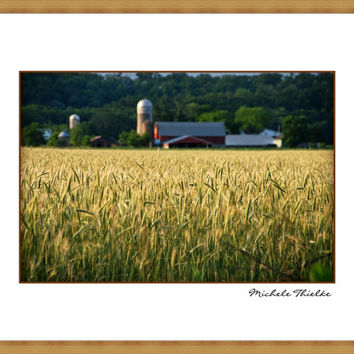 Country Farm Landscape Photography americana,hay field,dairy farm,dried grasses,evening sunset,wisconsin,serene,simplistic decor,summer,